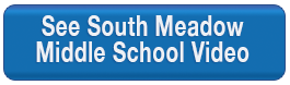 Freeze that Disease South Meadow School Video